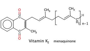 MK7 (Vitamin K2) là gì