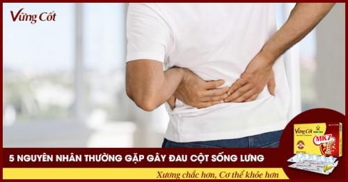 5 nguyên nhân gây đau cột sống lưng thường gặp